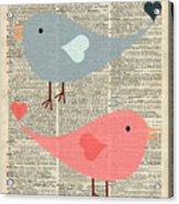 Cartoon Birds In Love  Acrylic Print
