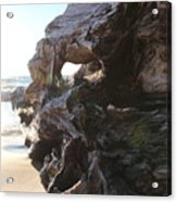 Carving Driftwood Acrylic Print