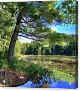 Cary Lake In August Acrylic Print