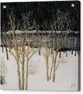 Cary Winter-sold Acrylic Print
