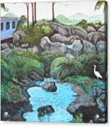 Casa Tropical Acrylic Print