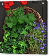 Cascade Of Flowers Acrylic Print