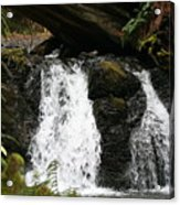 Cascade Waterfalls Wf1003 Acrylic Print