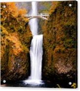 Cascading Gold Waterfall II Acrylic Print