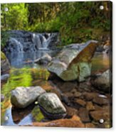 Cascading Waterfall At Sweet Creek Falls Trail Acrylic Print