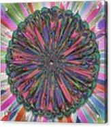Cassandra -- Floral Disk Acrylic Print