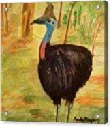 Cassowary Bird Acrylic Print