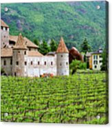 Castle And Vineyard In Italy Acrylic Print by Greg Matchick