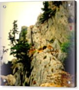 We Climbed Up To The Old Castle  Acrylic Print