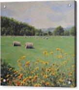 Castleton Acrylic Print