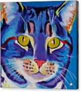Cat - Lady Spirit Acrylic Print by Alicia VanNoy Call