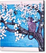 Cat Among The Cherry Blossoms Acrylic Print by Sarah Swift