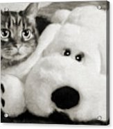 Cat And Dog In B W Acrylic Print