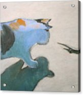 Cat And Lizard  Acrylic Print