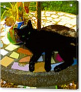 Cat And Table Acrylic Print