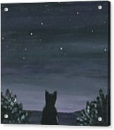 Cat And The Stars Acrylic Print