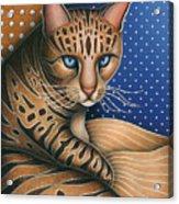 Cat Andrea Acrylic Print