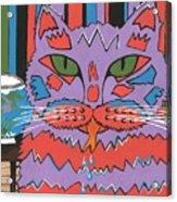 Cat Attack Acrylic Print