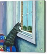 Cat By The Window Acrylic Print