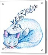 Cat Dreams Acrylic Print