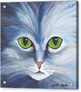 Cat Eyes Blue Acrylic Print