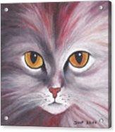 Cat Eyes Red Acrylic Print