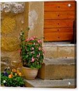 Cat In Capestang France Acrylic Print