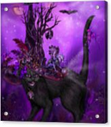 Cat In Goth Witch Hat Acrylic Print