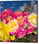Cat In Roses Acrylic Print