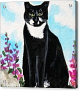 Cat In The Garden Acrylic Print