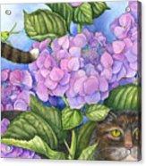 Cat In The Garden Acrylic Print