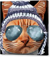 Cat Kitty Kitten In Clothes Aviators Toque Beanie Acrylic Print