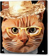 Cat Kitty Kitten In Clothes Yellow Glasses Straw Acrylic Print