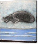 Cat On A Cloud Acrylic Print