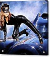 Cat On Bat Mobile Acrylic Print