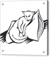 Cat On Pillow Acrylic Print