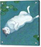 Cat On Vacation Acrylic Print