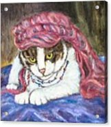 Tabby Cat With Yellow Eyes Acrylic Print