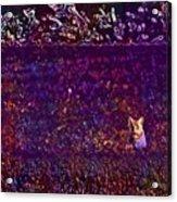 Cat Sunshine Caught View Portrait  Acrylic Print