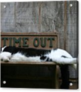Cat Time Out Acrylic Print