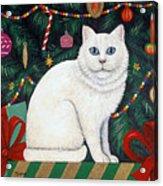 Cat Under The Christmas Tree Acrylic Print