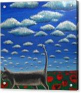 Cat Who Walks Alone Acrylic Print