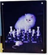 Cat With Chess Board Anbd Mouse Acrylic Print