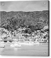 Catalina Island Avalon Bay Black And White Panorama Photo Acrylic Print