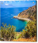 Catalina Island Lover's Cove Picture Acrylic Print