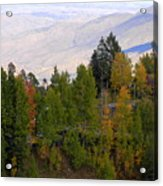Catalina Mountains In The Fall Acrylic Print