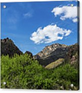 Catalina Mountains In Tucson Arizona Acrylic Print