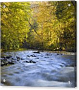 Cataloochee Valley River Acrylic Print