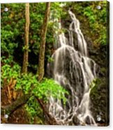 Cataract Falls In Great Smoky Mountains National Park Acrylic Print
