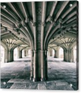 Cathedral Arches Acrylic Print
